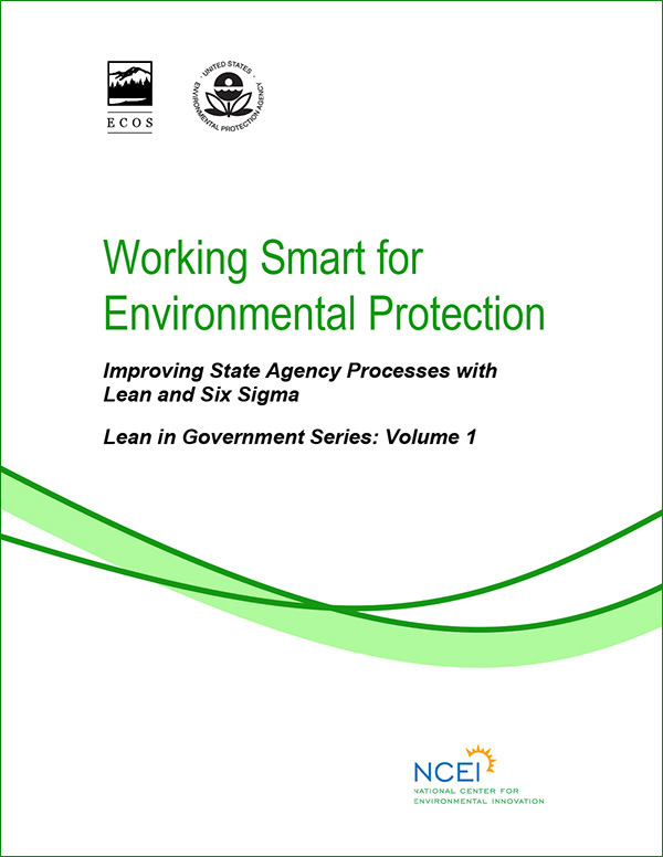 cover of Working Smart for Environmental Protection